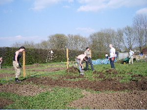 20070407allotment